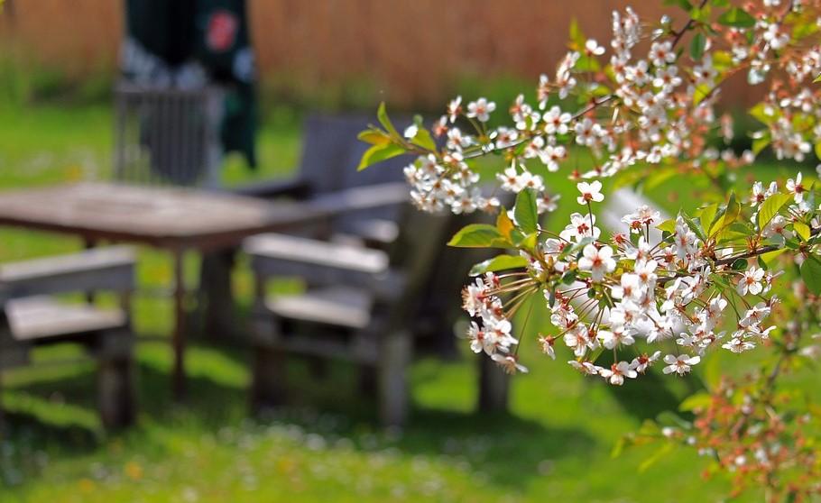 Meble ogrodowe na lata